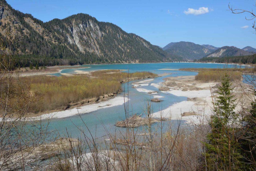Die Isarmündung: Westlich von Fall fließt die Isar in den Sylvensteinsee