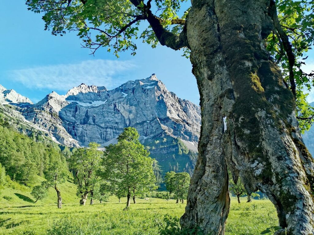MTB Sylvensteinsee - vom Sylvensteinspeichersee in die Eng zum Ahornboden mountainbiken