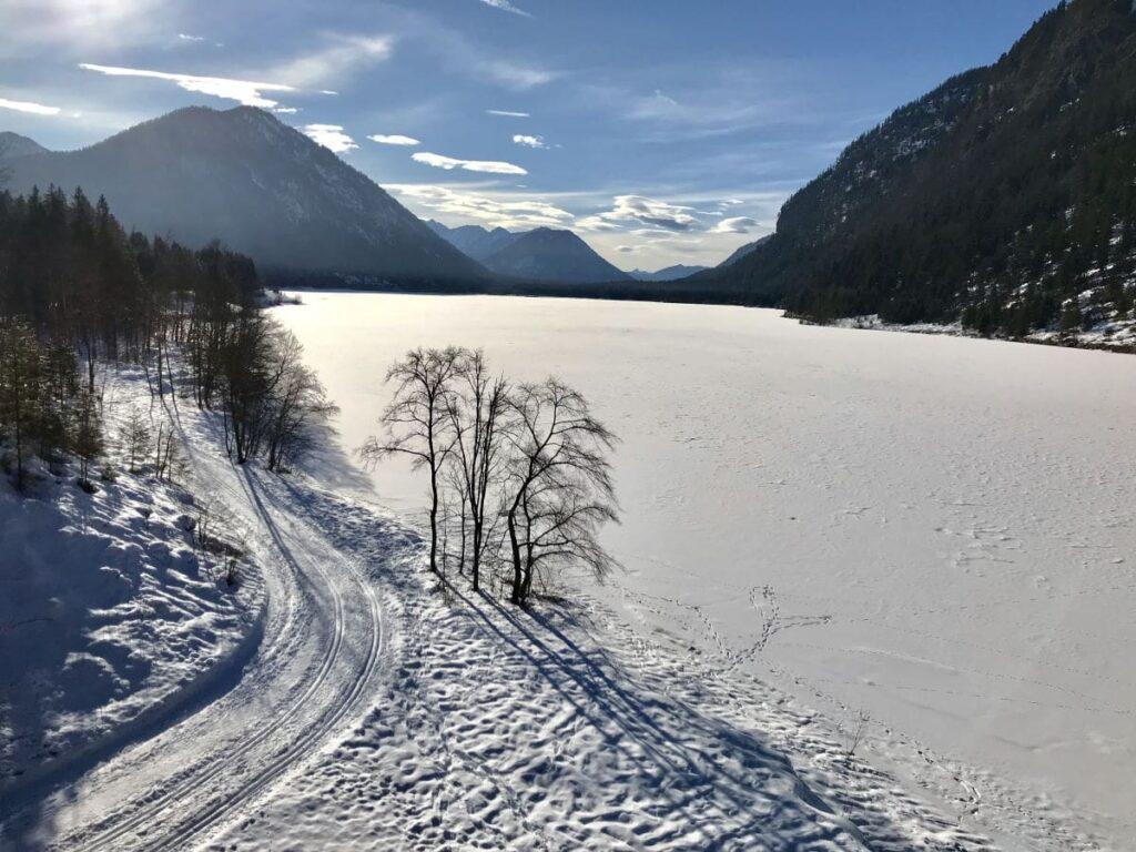 So kannst du am Sylvenstein langlaufen - die Loipe am See in Richtung Vorderriss